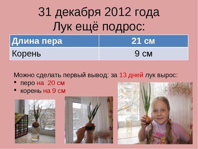 31 декабря 2012 года Лук ещё подрос: Можно сделать первый вывод: за 13 дней л...