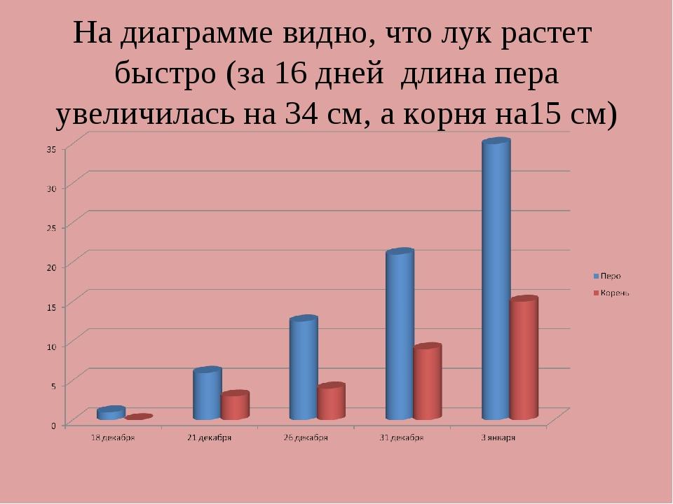 На диаграмме видно, что лук растет быстро (за 16 дней длина пера увеличилась...