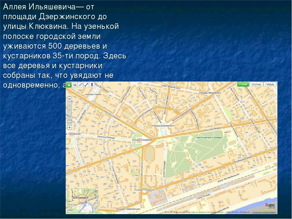Аллея Ильяшевича— от площади Дзержинского до улицы Клюквина. На узенькой поло...