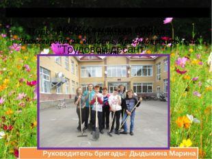 МАОУ Салганская СОШ Нижегородская область,Краснооктябрьский район Руководите