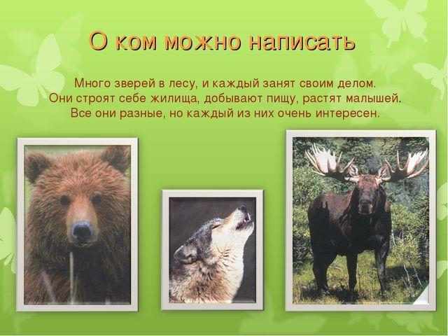 О ком можно написать Много зверей в лесу, и каждый занят своим делом. Они стр...