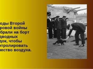 В годы Второй мировой войны их брали на борт подводных лодок, чтобы контролир