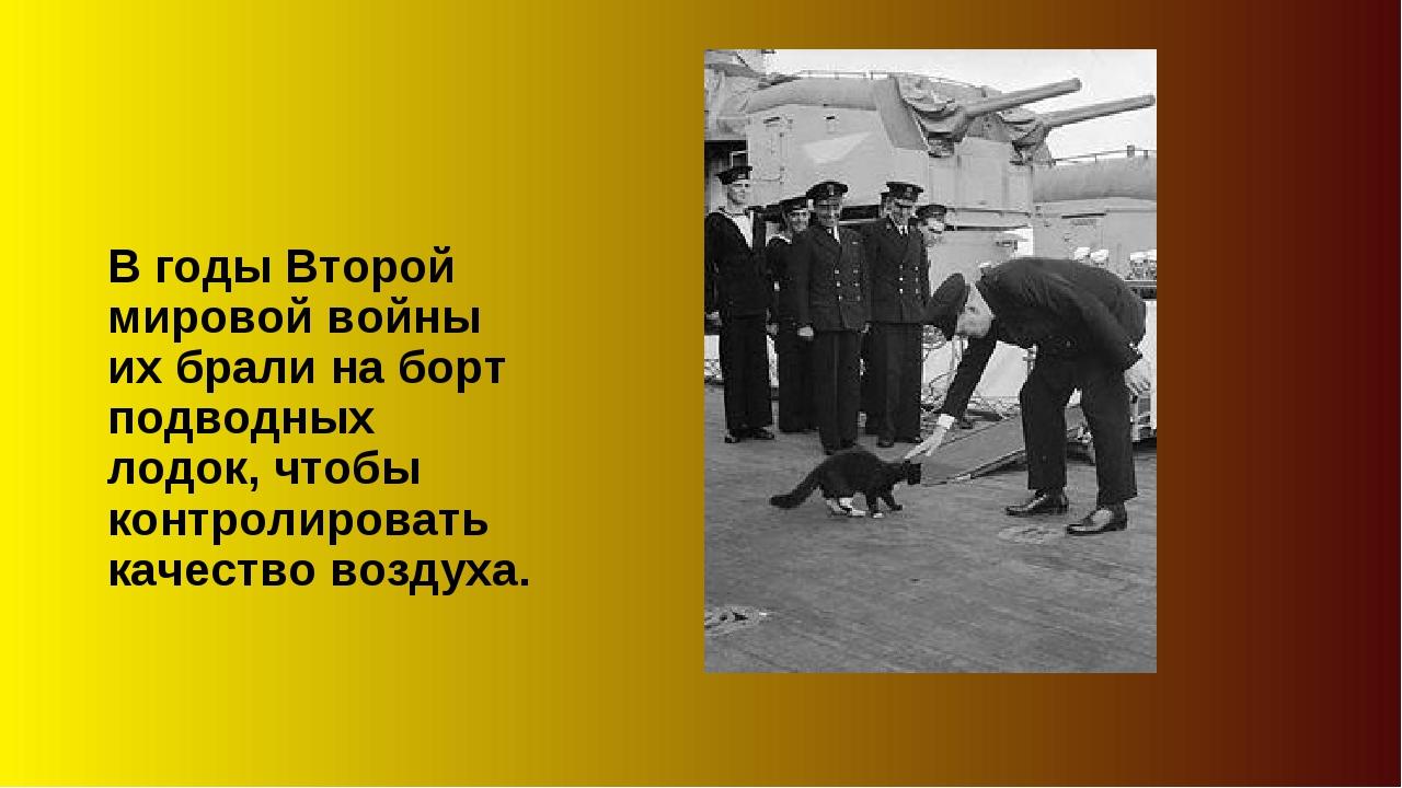 В годы Второй мировой войны их брали на борт подводных лодок, чтобы контролир...