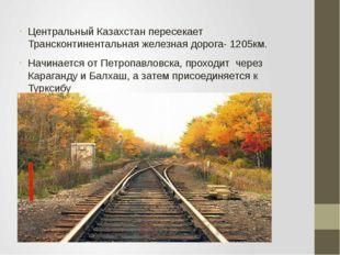 Центральный Казахстан пересекает Трансконтинентальная железная дорога- 1205км