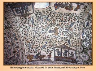 Виноградные лозы. Мозаика IV века. Мавзолей Констанции. Рим