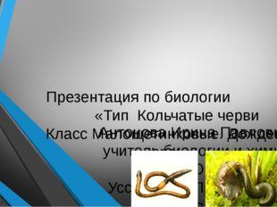 Презентация по биологии «Тип Кольчатые черви Класс Малощетинковые. Дождевой