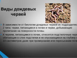 Виды дождевых червей В зависимости от биологии дождевых червей их подразделяю