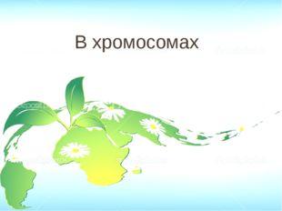 Строение 40 Соотнесите клетки мякоти: А.Жгучих волосков листьев Б.Зелёного ли
