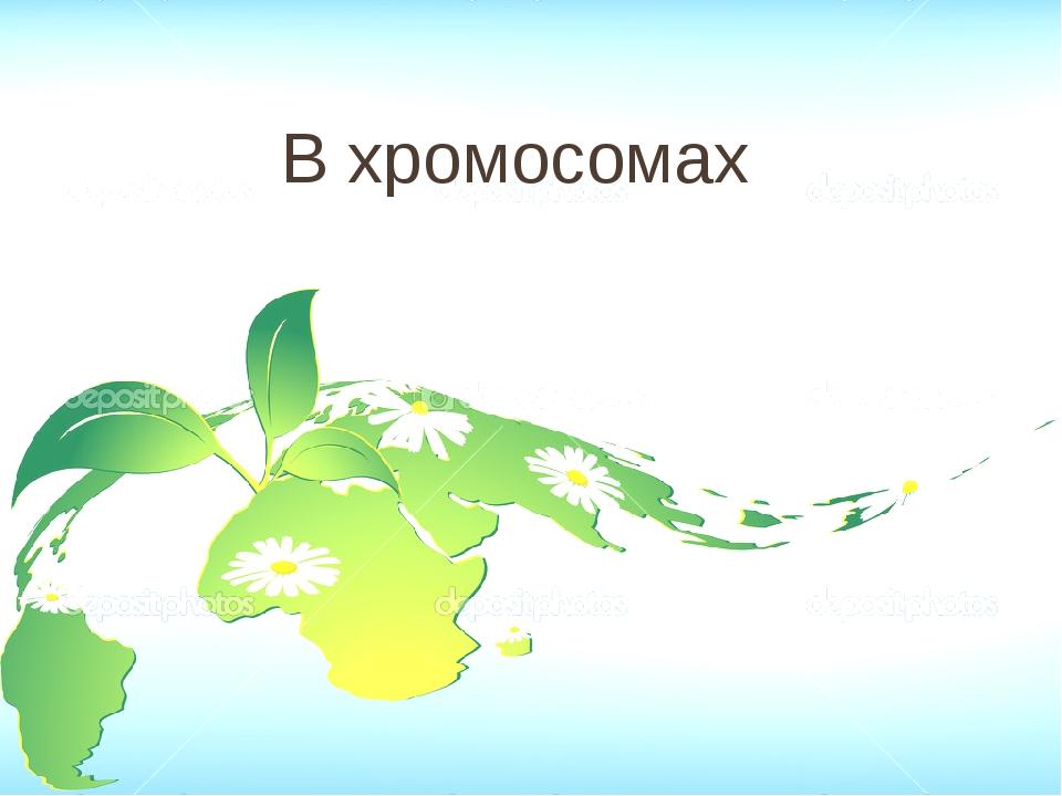 Строение 40 Соотнесите клетки мякоти: А.Жгучих волосков листьев Б.Зелёного ли...