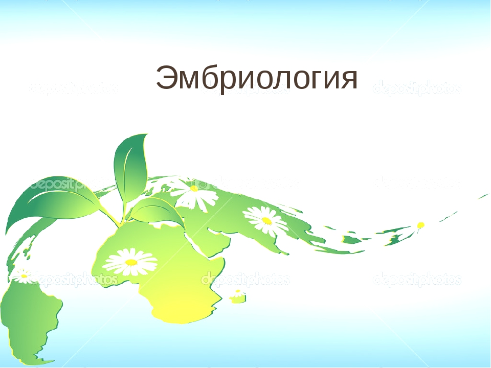 Список литературы и Интернет-ресурсы: Учебник биологии «Живой организм». Сухо...