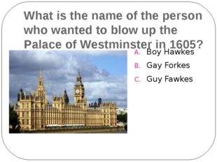 What is the name of the person who wanted to blow up the Palace of Westminste
