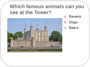 Which famous animals can you see at the Tower? Ravens Dogs Bears