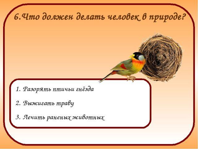 6.Что должен делать человек в природе? Разорять птичьи гнёзда Выжигать траву...