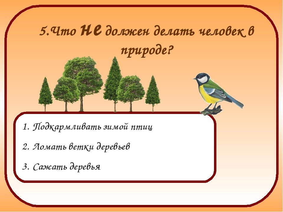 5.Что не должен делать человек в природе? Подкармливать зимой птиц Ломать вет...