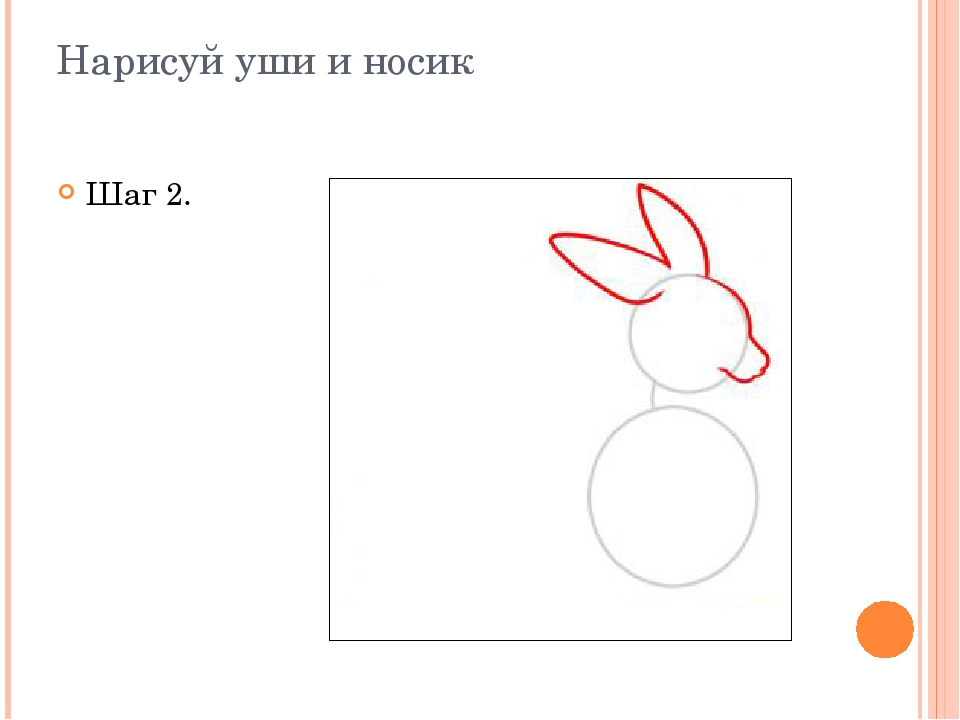 Нарисуй уши и носик Шаг 2.