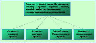 hello_html_m22bfd116.jpg