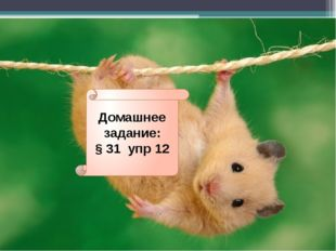 Домашнее задание: § 31 упр 12