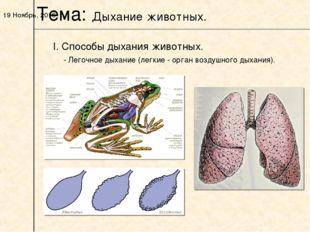 * I. Способы дыхания животных. Тема: Дыхание животных. - Легочное дыхание (ле