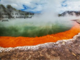 Reason 3. 23. You can see boiling hot, bubbling mud pools.