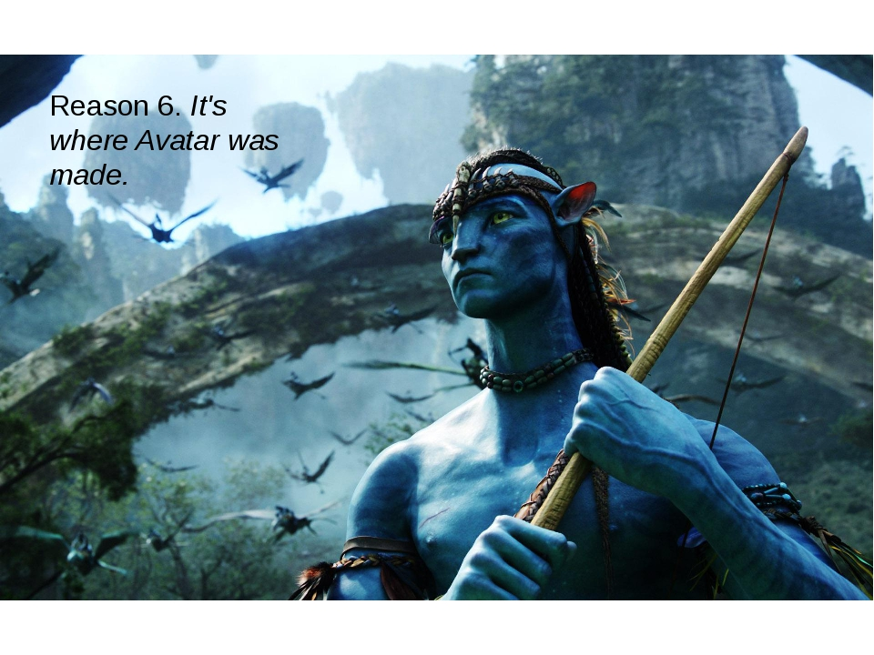 Reason 6. It's where Avatar was made.