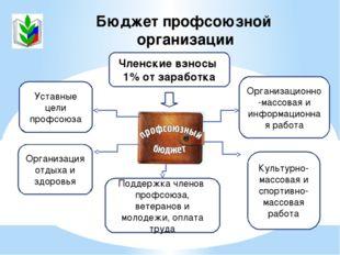 Бюджет профсоюзной организации Членские взносы 1% от заработка Культурно-масс