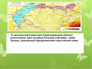 В центральном Казахстане (Карагандинская область) расположено одно из самых