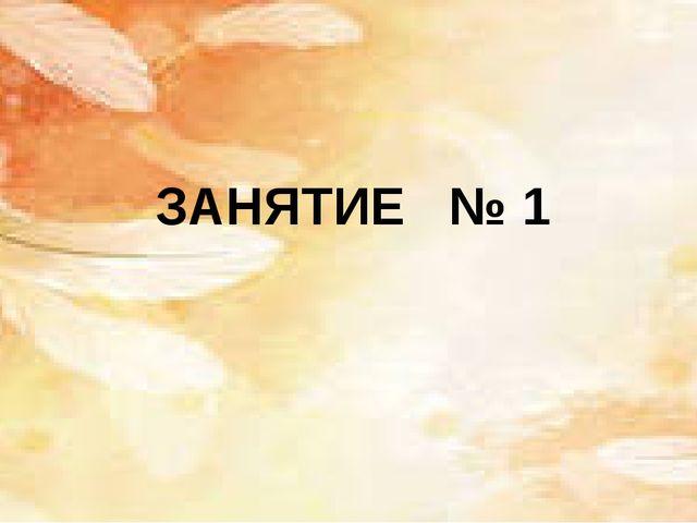 ЗАНЯТИЕ № 1