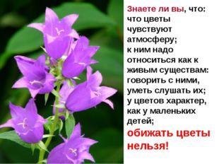 Знаете ли вы, что: что цветы чувствуют атмосферу; к ним надо относиться как
