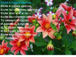 Если я сорву цветок... Если я сорву цветок, Если ты сорвешь цветок… Если все: