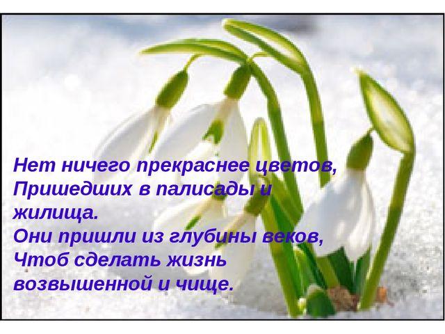 Нет ничего прекраснее цветов, Пришедших в палисады и жилища. Они пришли из гл...