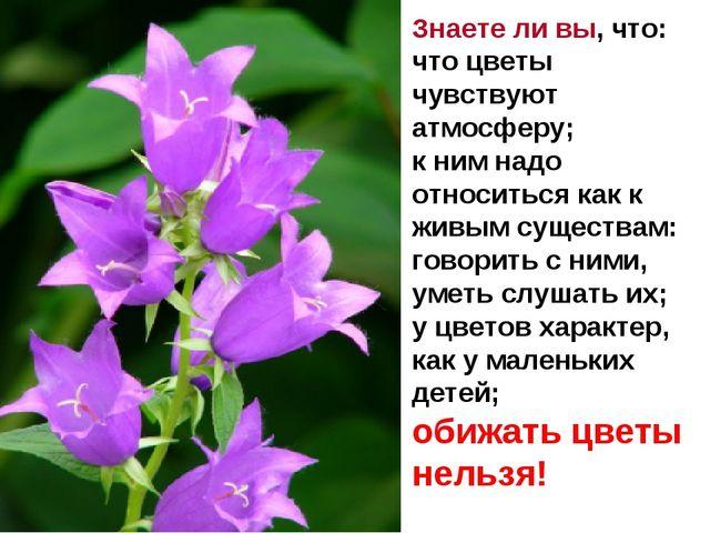 Знаете ли вы, что: что цветы чувствуют атмосферу; к ним надо относиться как...