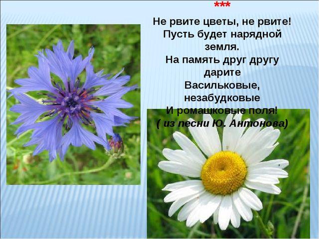 ЦВЕТЫ ПОЛЕВЫЕ *** Не рвите цветы, не рвите! Пусть будет нарядной земля. На па...