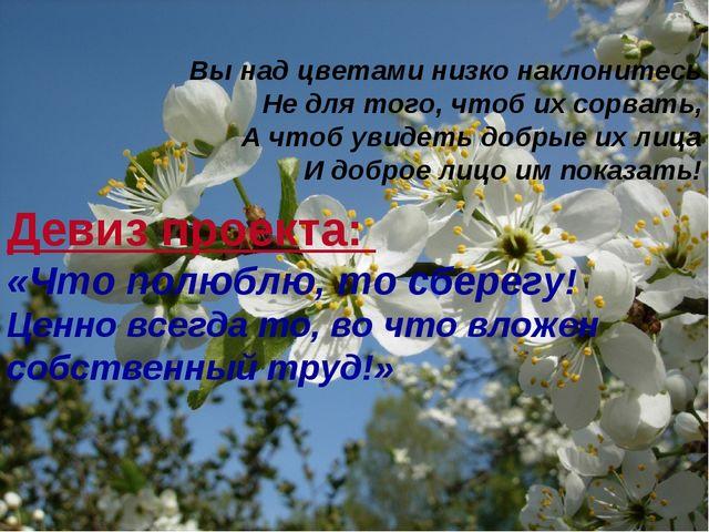 Вы над цветами низко наклонитесь Не для того, чтоб их сорвать, А чтоб увидеть...