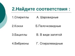 2.Найдите соответствия : 1.Спириллы А. Шаровидные 2.Кокки Б.Палочковидные 3.Б
