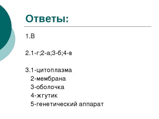 Ответы: 1.В 2.1-г;2-а;3-б;4-в 3.1-цитоплазма 2-мембрана 3-оболочка 4-жгутик 5...