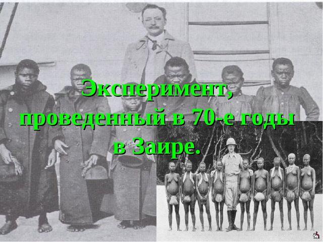 Эксперимент, проведенный в 70-е годы в Заире.