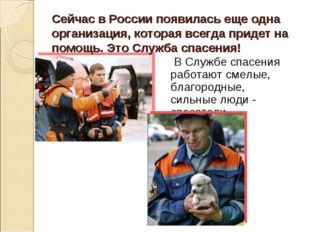 Сейчас в России появилась еще одна организация, которая всегда придет на помо