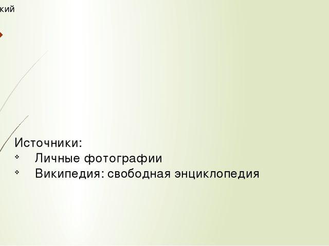 Технический музей Источники: Личные фотографии Википедия: свободная энциклопе...