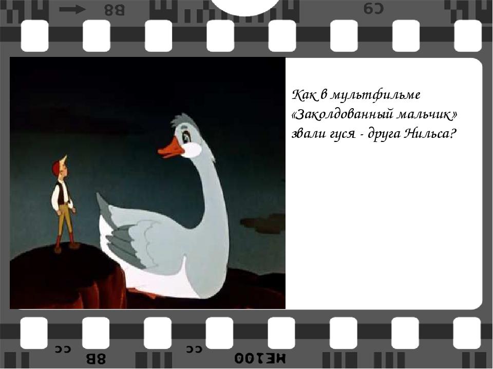 Как в мультфильме «Заколдованный мальчик» звали гуся - друга Нильса?