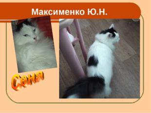Максименко Ю.Н.