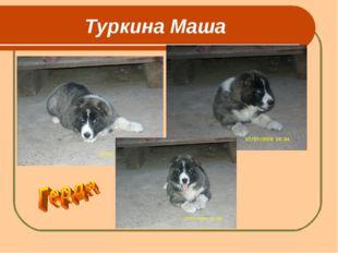 Туркина Маша