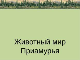 Животный мир Приамурья подготовила ученица 3 «Б» класса МОБУ Новобурейской С