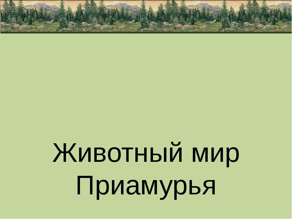 Животный мир Приамурья подготовила ученица 3 «Б» класса МОБУ Новобурейской С...