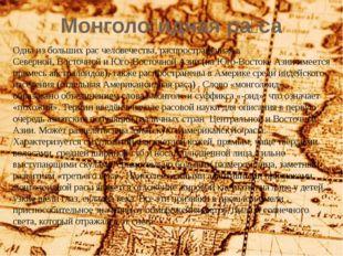 Монголо́идная ра́са Одна из больших рас человечества, распространённая в Севе