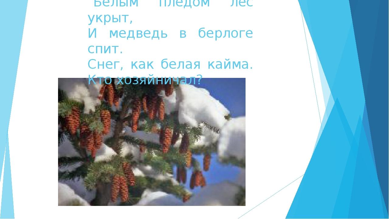 Белым пледом лес укрыт, И медведь в берлоге спит. Снег, как белая кайма. Кто...