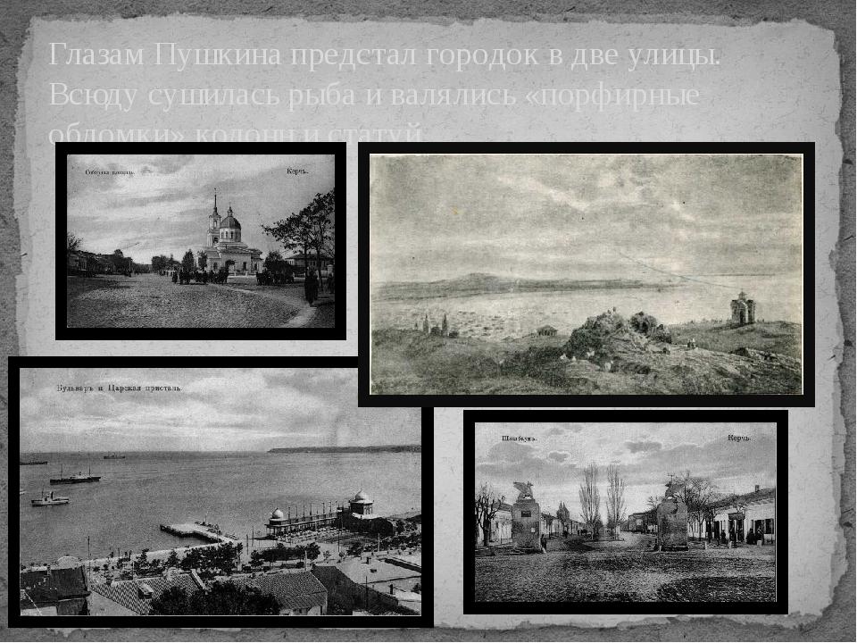 Глазам Пушкина предстал городок в две улицы. Всюду сушилась рыба и валялись «...