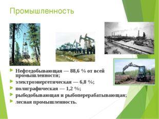 Промышленность Нефтедобывающая — 88,6% от всей промышленности; электроэнерге