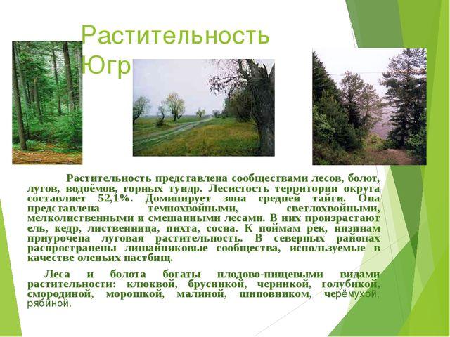 Растительность Югры Растительность представлена сообществами лесов, болот, лу...