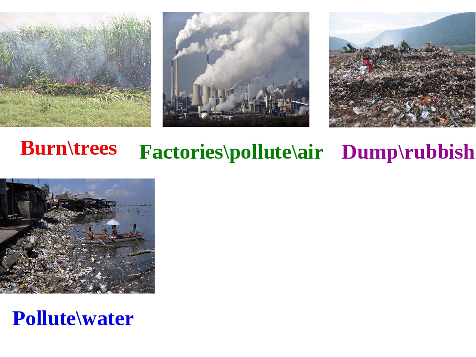 Burn\trees Factories\pollute\air Dump\rubbish Pollute\water