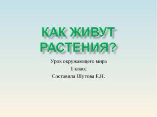 Урок окружающего мира 1 класс Составила Шутова Е.Н.
